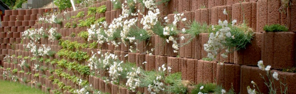 Hangsicherung mit Hangflor Stein darin weiße Blumen