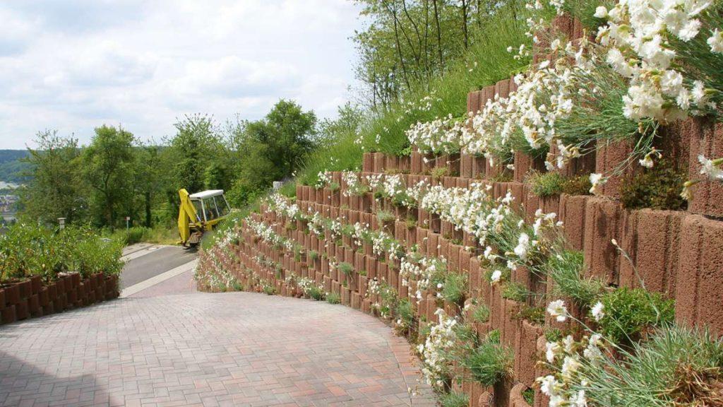 Zufahrtsstrasse mmit Pflanzenringen auf der linken Seite 3 Meter hoch und darin grüne Blumen