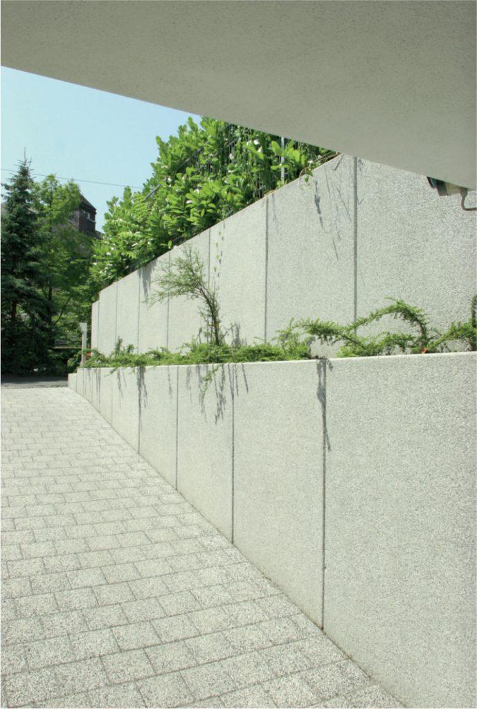 beton wand mit pflanzen kombiniert